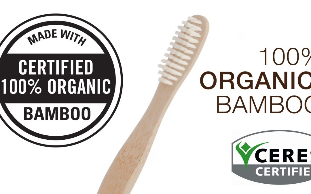 Brush with Bamboo 4-pack Toothbrush Giveaway